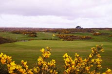 18th Hole at Barna Golf Club
